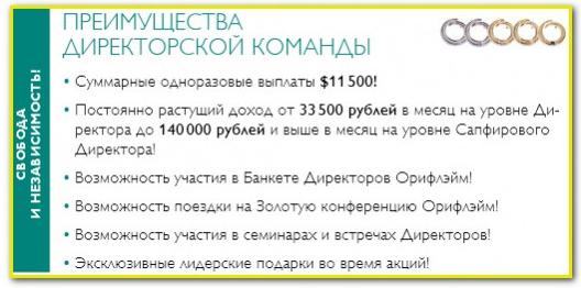 Бизнес план орифлейм директорская команда