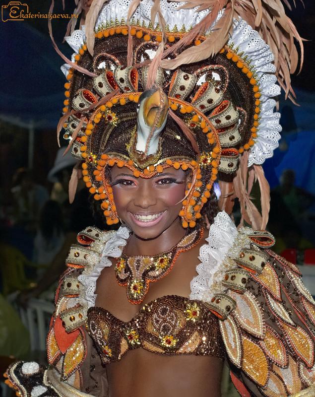 Парад школ самбы - участница карнавала