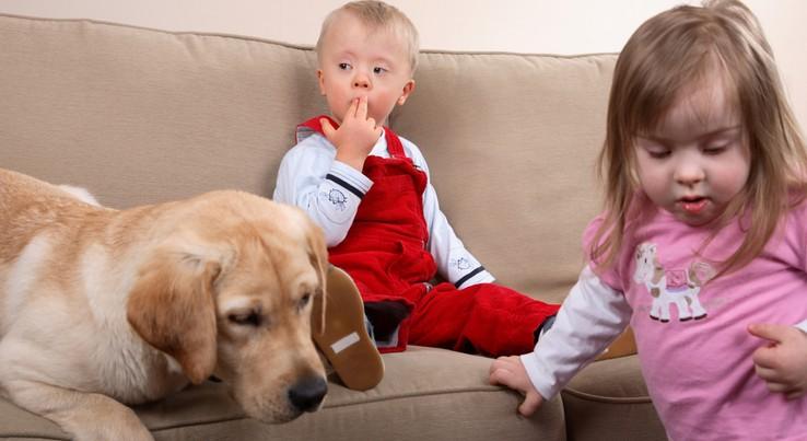 ippoterapia - Животные лечат людей