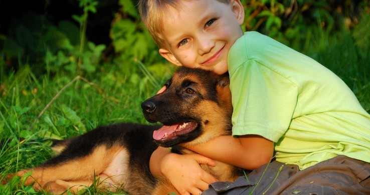 sobaki - Животные лечат людей