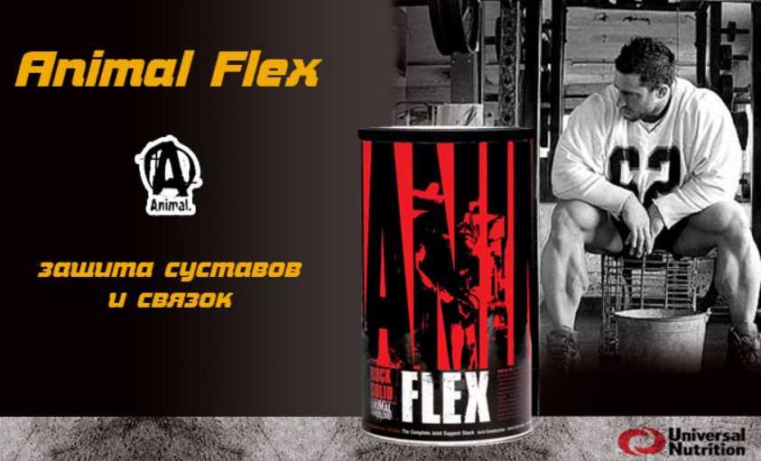animal flex - Animal Flex - мощная защита суставов и связок
