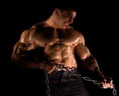 testosteron 235x190 - Universal Nutrition Animal M-Stak: повышение тестостерона