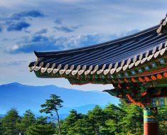 Что привезти из Южной Кореи